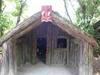 Maori_house